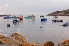 Die bunten Boote